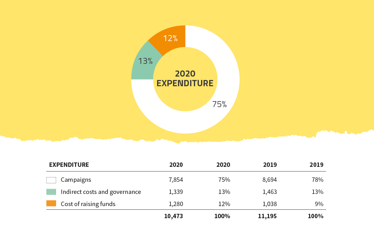Global Witness 2020 expenditure