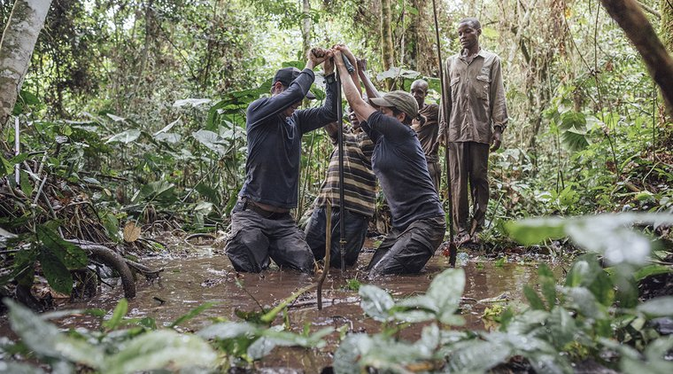 Scientists in Congo basin peatlands