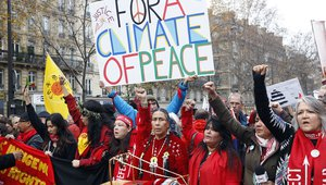 Environmentalists Protest During The World Climate Change Conference