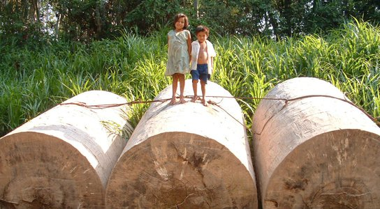 Peru kids on logs