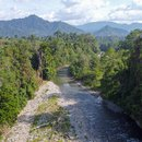 Natural rainforest in the Bainings region of East New Britain, Papua New Guinea.