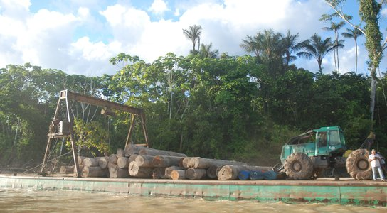 Logs on the Peruvian Amazon
