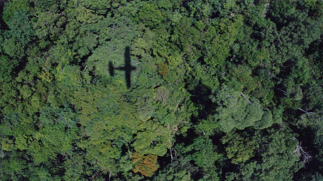 Prey Lang forest canopy - plane shadow