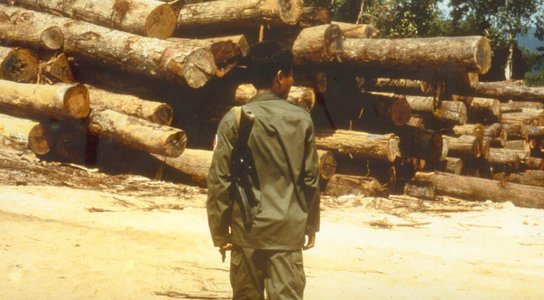 soldier with logs resize